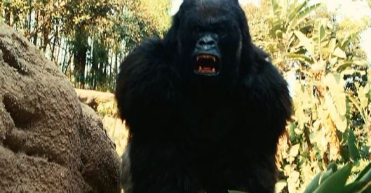 They run into King Kong...