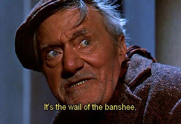 darby banshee