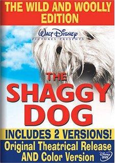 theshaggydog